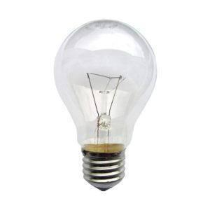 Light Bulb #021195