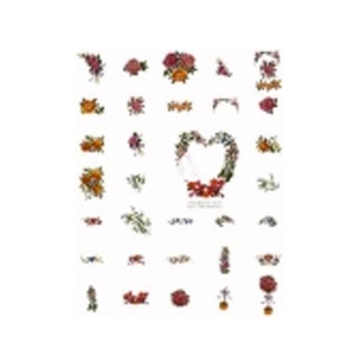 Card #386797- No. 15 Gigantic Floral